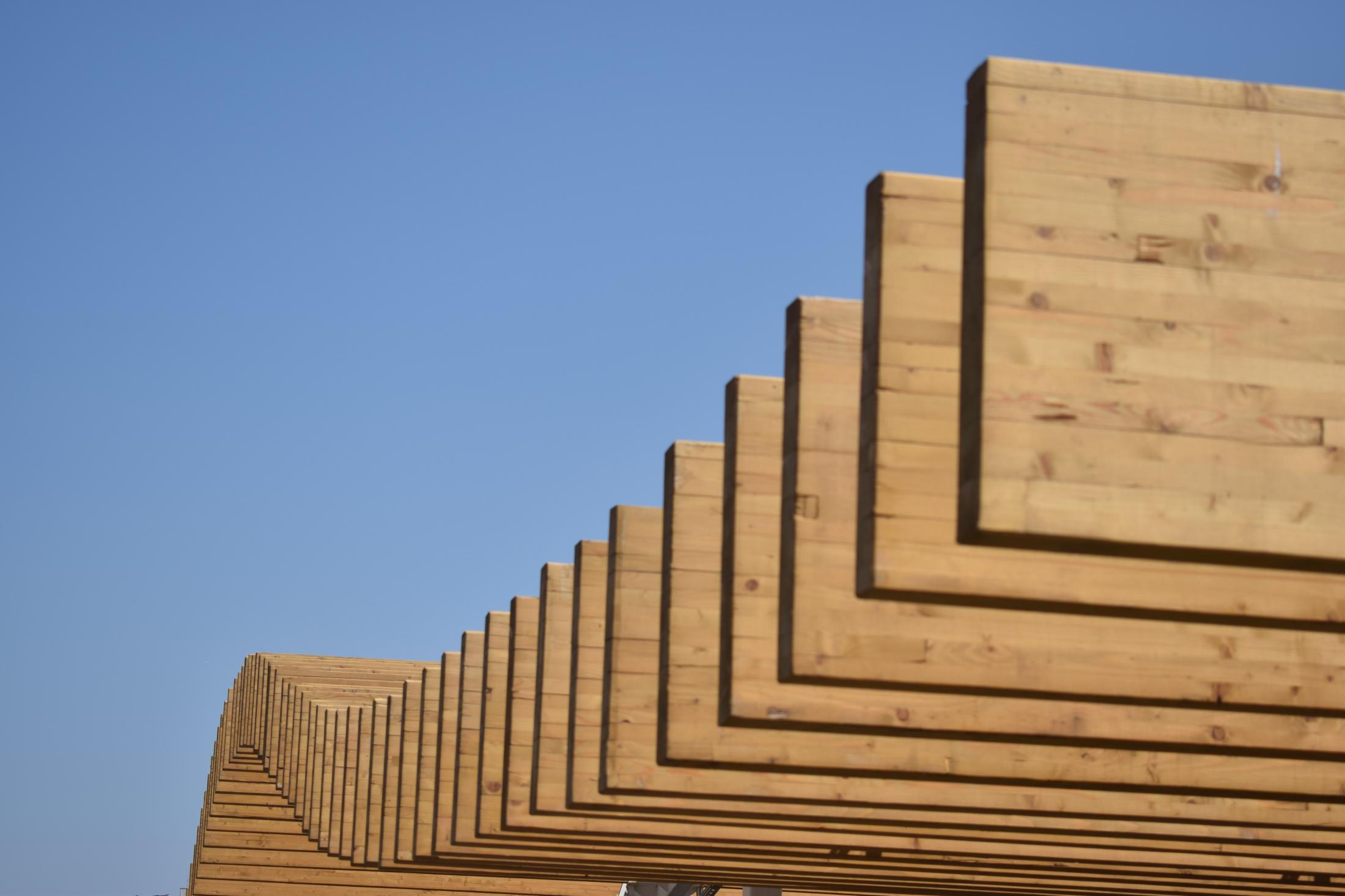 Die 5 größten Mythen rund ums Thema Holzbau – und was Sie darüber wissen sollten